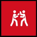 Ayala's Martial Arts Academy - self-defense